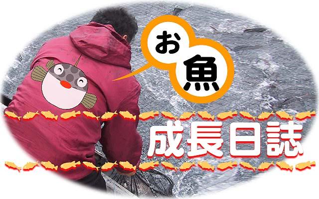 ... 漢字 の 読み方 は 漢字 の : 漢字 読み方 問題 : 漢字